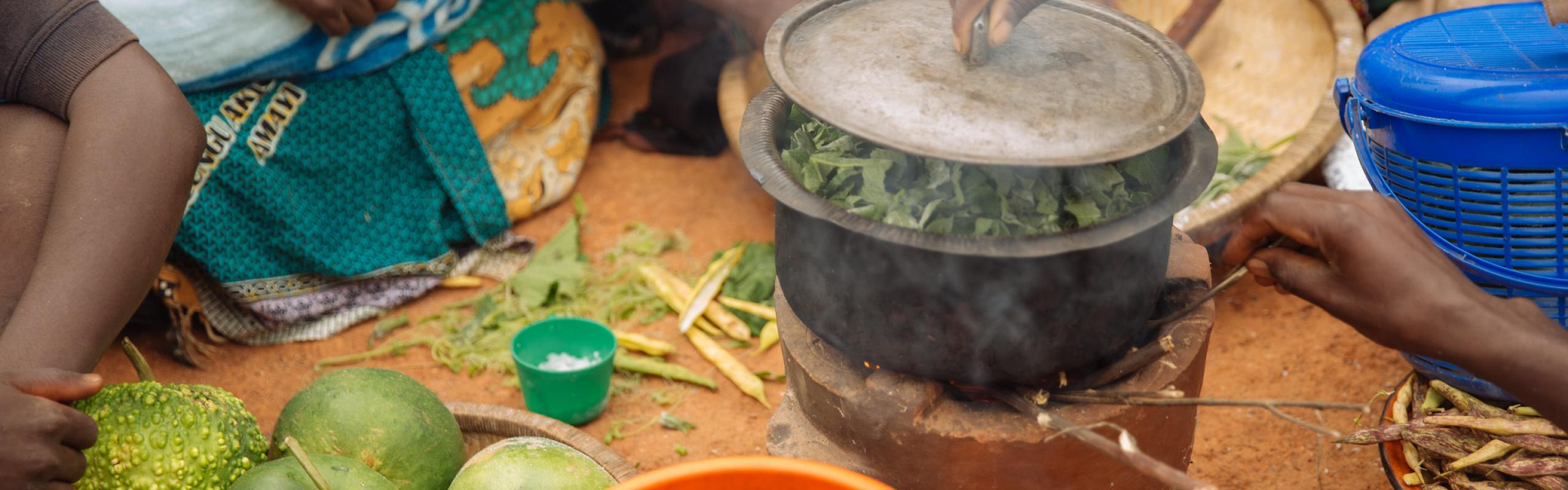 Village woman putting a lid on a pot with chopped greens cooking on an improved clay cook stove. Near Linongwe, Malawi