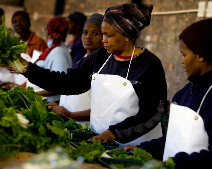 Women pack boxes of fresh vegetables in South Africa.